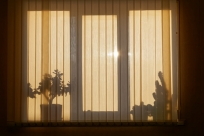 La importancia de las persianas correctas
